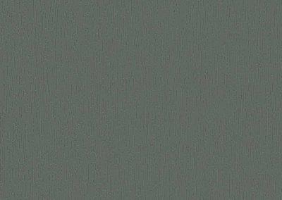 AP 102 Basaltgrau